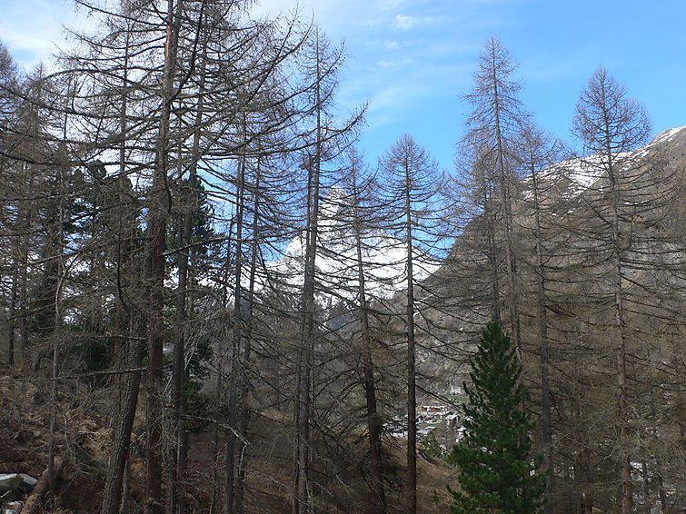 Le Gros Caillou - Zermatt