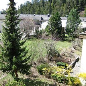 Lägenhet för upp till 5 personer med 3 rum på Cristallina I WG 11 - Laax-Uletsch