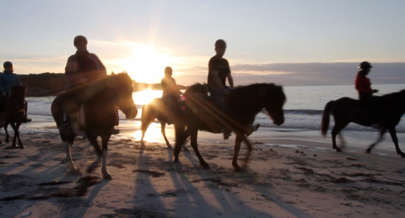 Horseback riding under the Midnight Sun in Lofoten