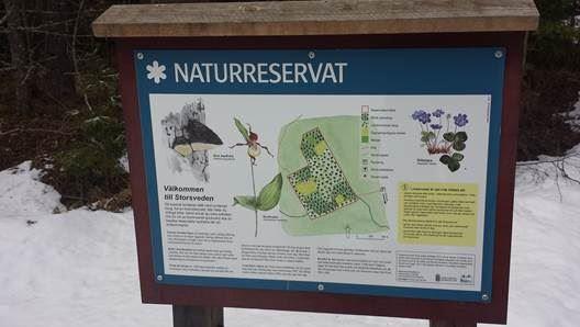 Storsvedens naturreservat