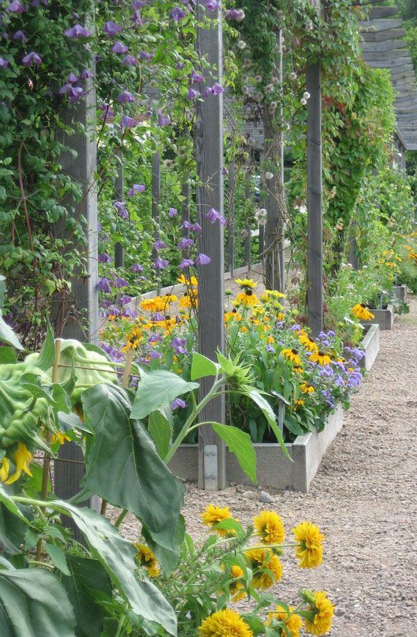 Möckelsnäs Garten