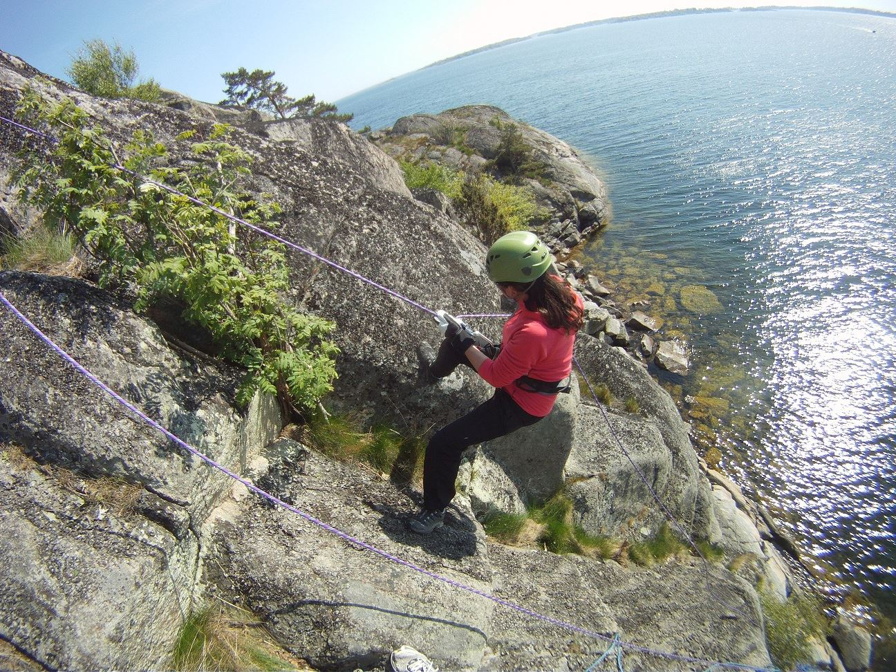 Teambuilding på Eriksberg Vilt & Natur