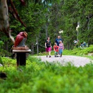 """""""Troll forest"""" in Hundfjället"""