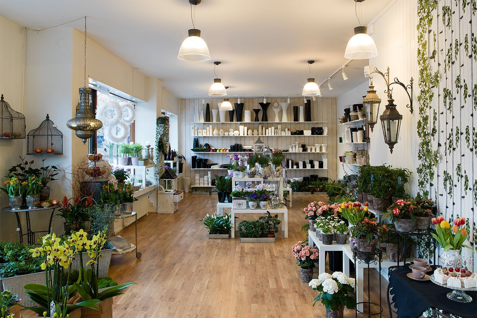 Anna Sköld, Skillingaryds Blomsterhandel - Översiktsbild