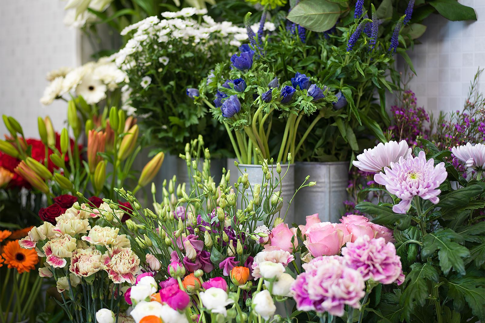 Anna Sköld, Skillingaryds Blomsterhandel - Snittblommor