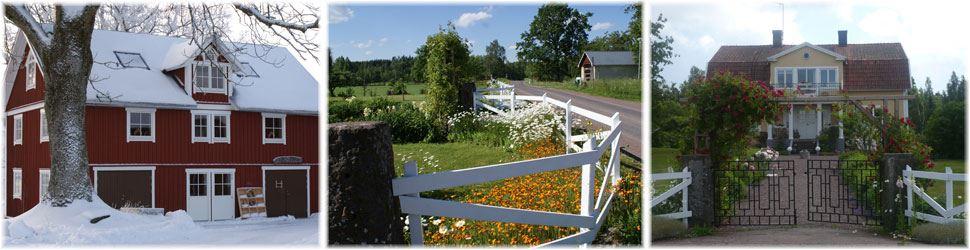 Ängs Gård - Ateljé, Butik & Trädgård
