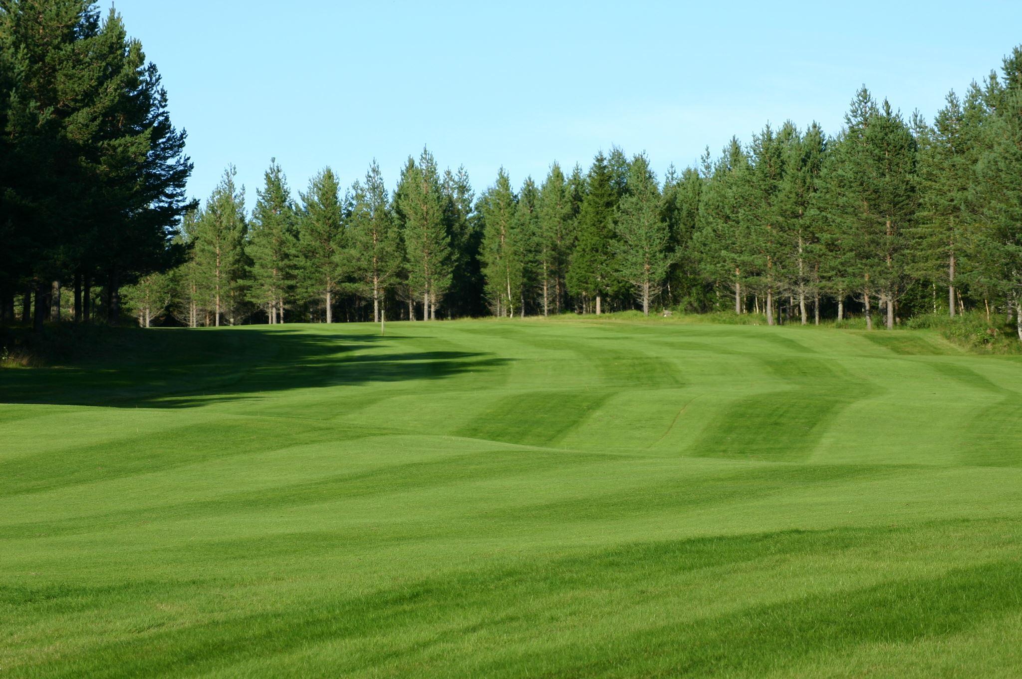 Sälenfjällens Golf