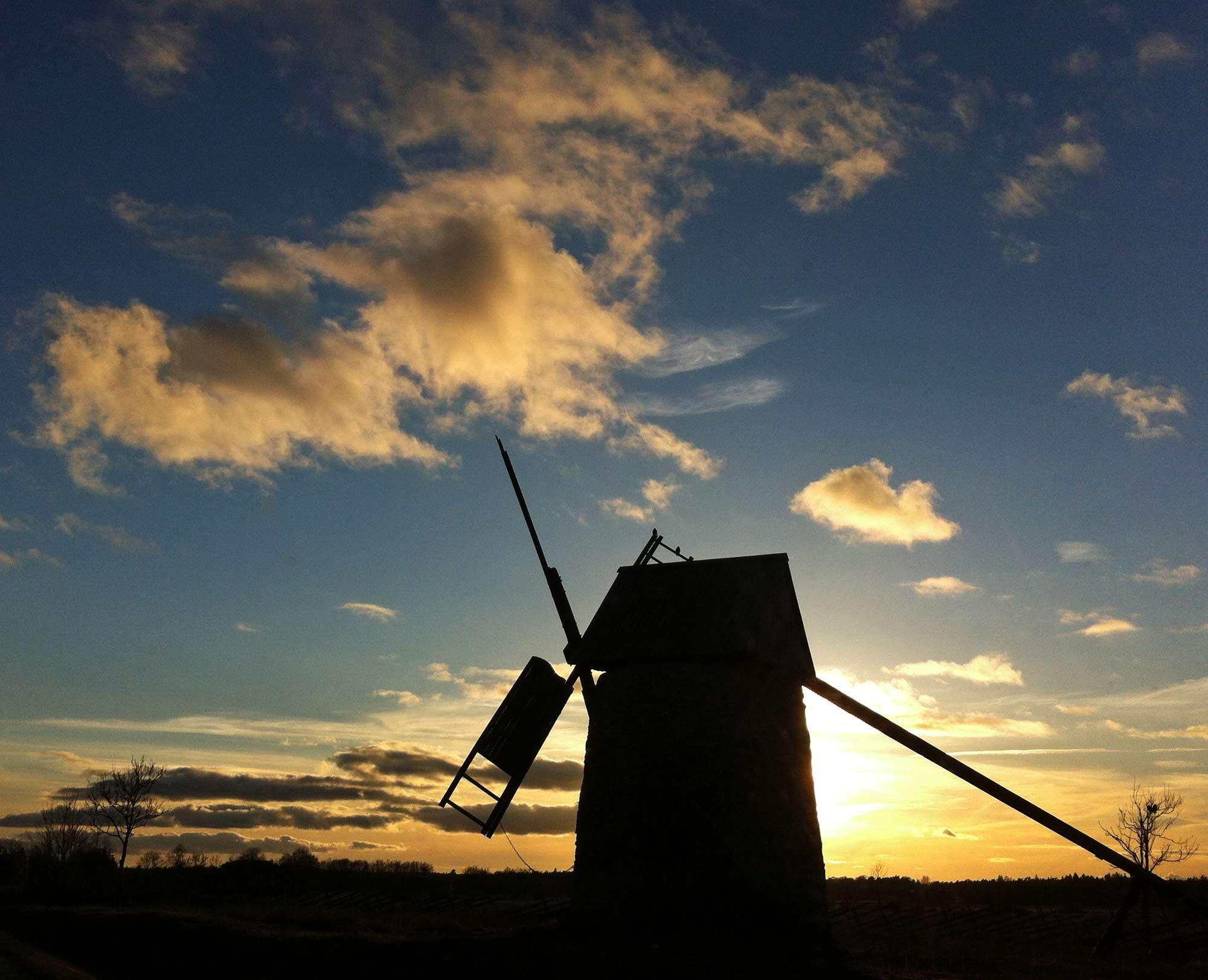 Nattsafari - upplev magin i den gotländska sommarnatten