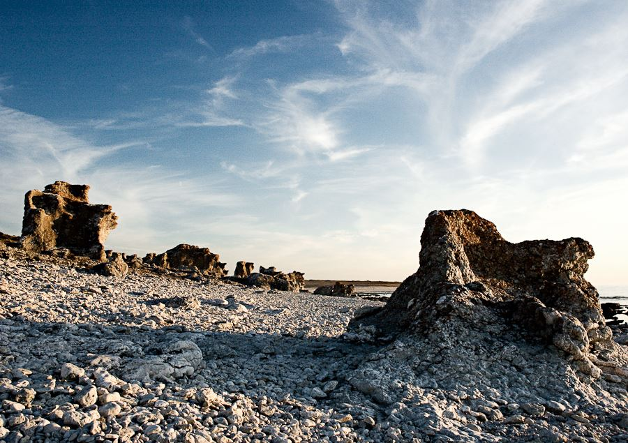 Fårö - In the footsteps of Ingmar Bergman