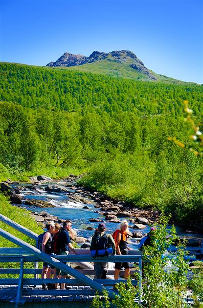 Tor Larsson,  © Visit Hemavan Tärnaby , Tour of the day to Atoklimpen Nature Reserve