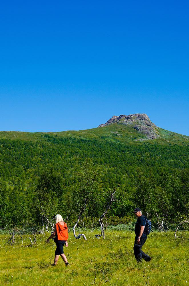 Atoklimpen - Sami cultural heritage