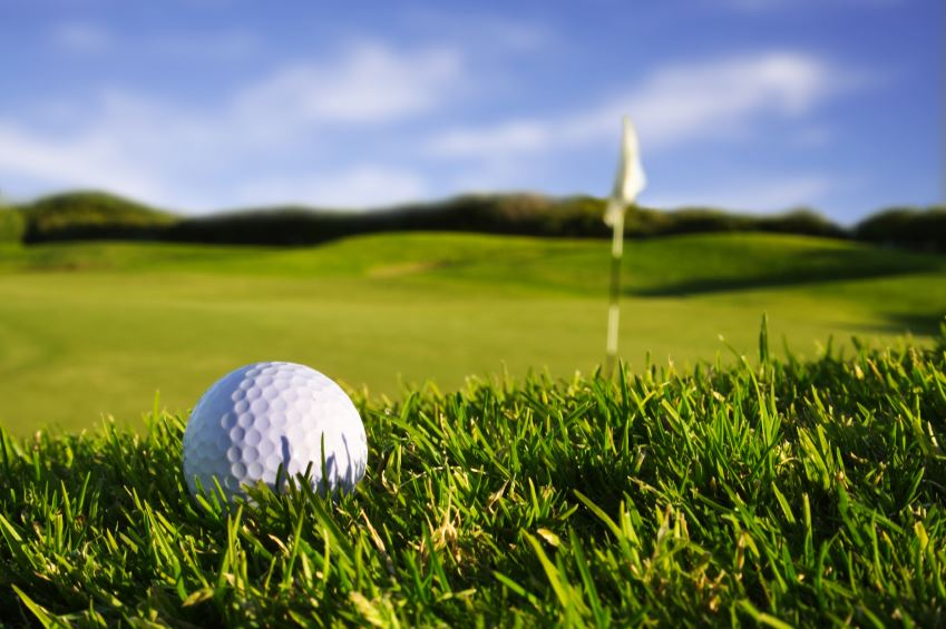 "Albatross GK ""The old golf course"""