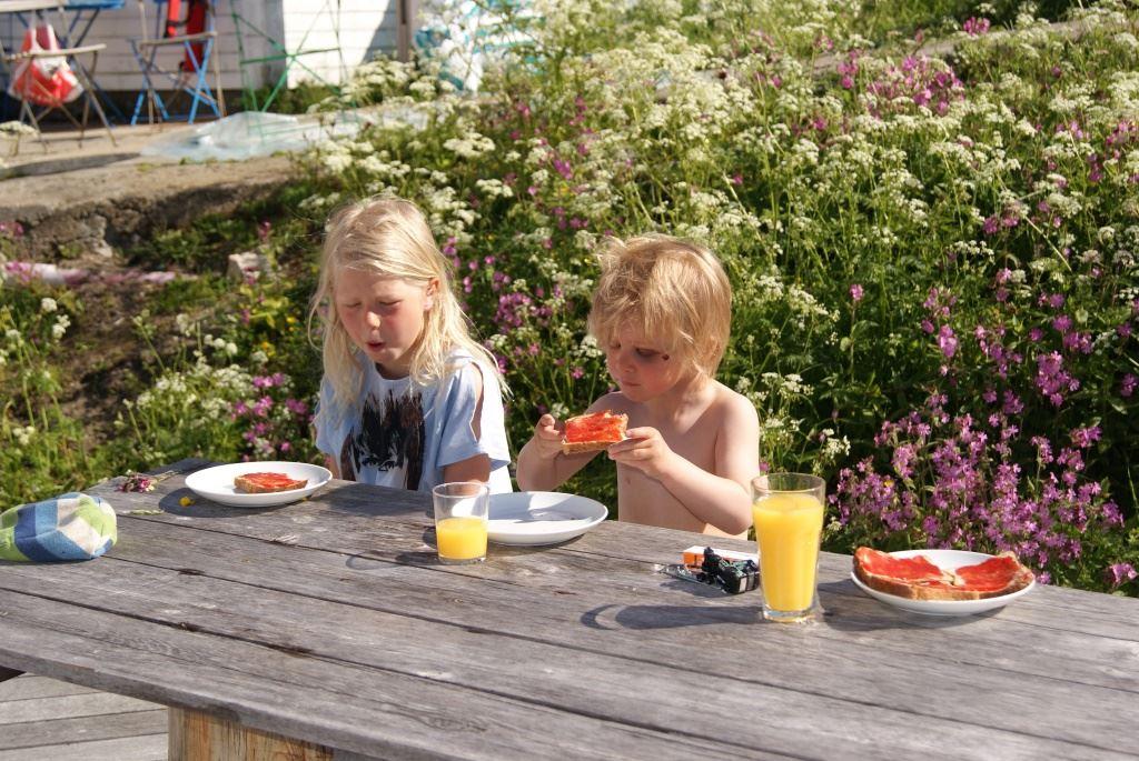 Risvær Brygger romutleie