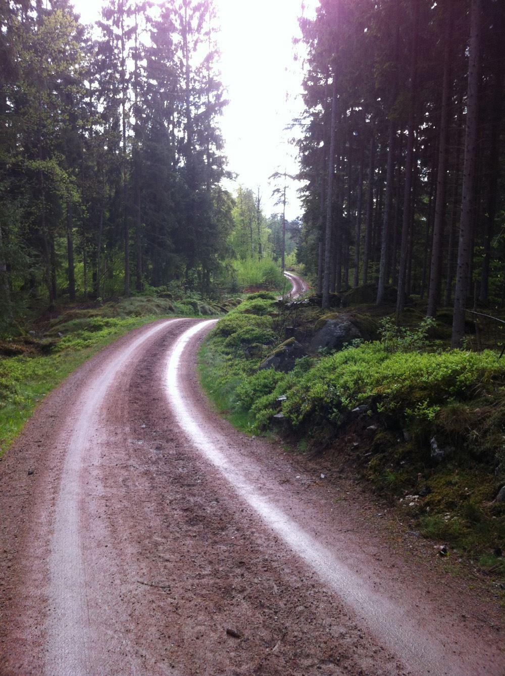 foto: Ylva Malm Ekvall