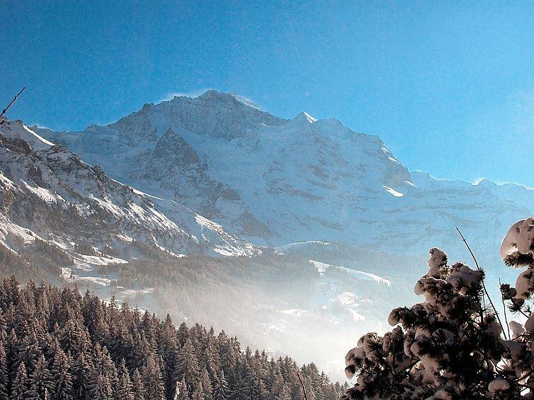 Jungfrau an der Ledi Wengen