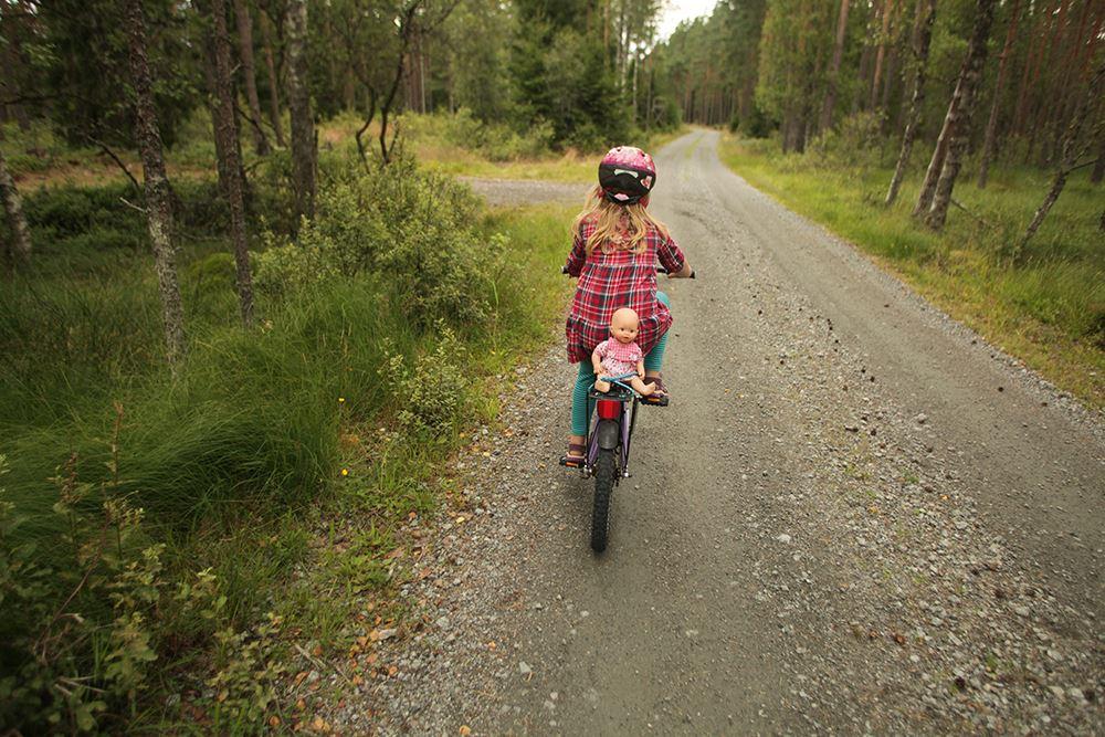 Cykelleder i Vaggeryds kommun