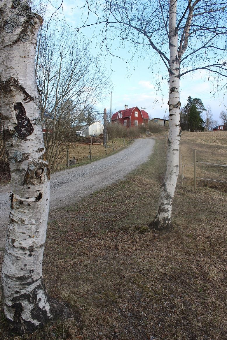 Countryside Accommodation - Cottage in Västerbacken (S5408)