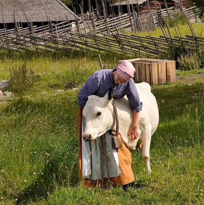 Foto: Jamtli,  © Copy: Jamtli, En kvinna som står bredvid en ko