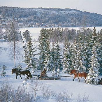 Foto: Jamtli,  © Copy: Jamtli, Hästar och slädar i vinterlandskap