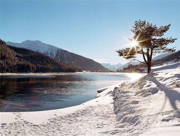 Appartement Feriensiedlung Solaria - Davos