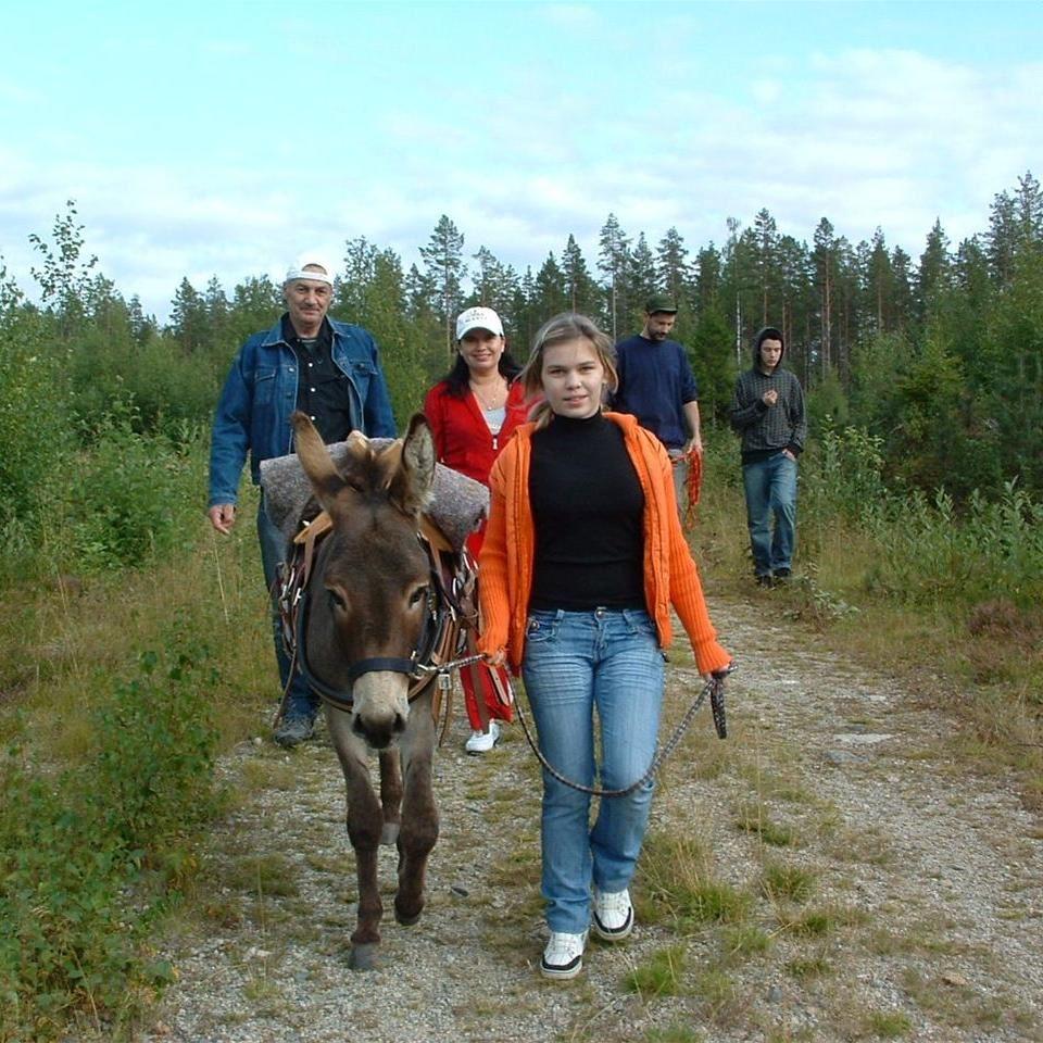 Aktiviteter på Farm Backsjön i Ådalen