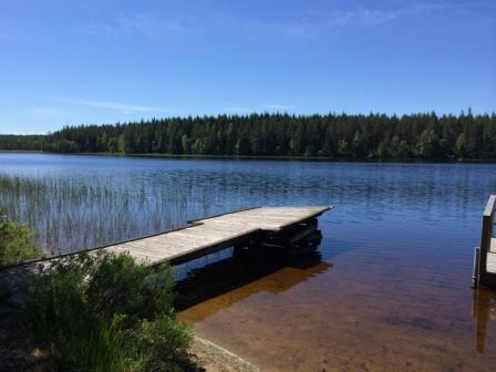 Torshytte Dammsjön