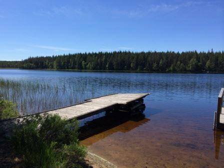 Annie S, Torshytte Dammsjön
