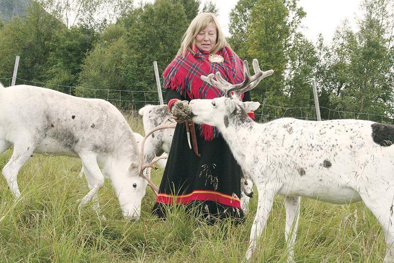 Samisk kultur - Inga Sami Siida