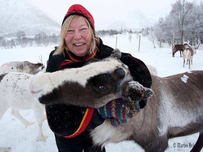 Sami culture - winter