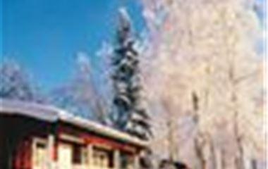 Nyårssupé i vintervackra Säfsen