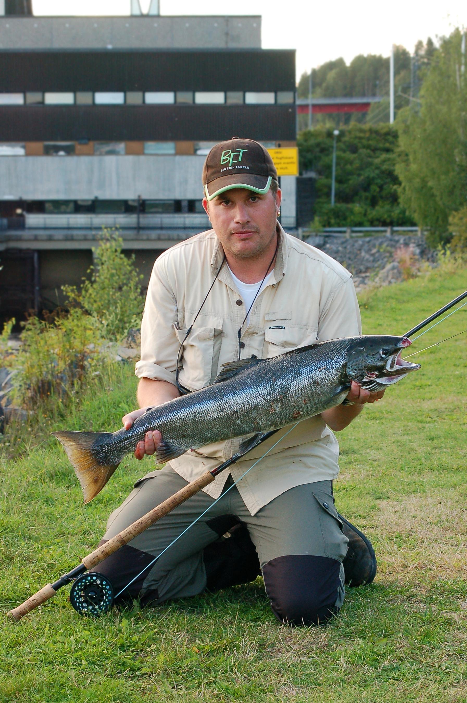 Foto: Media Lupus, Fångad lax vid Nipstadsfisket
