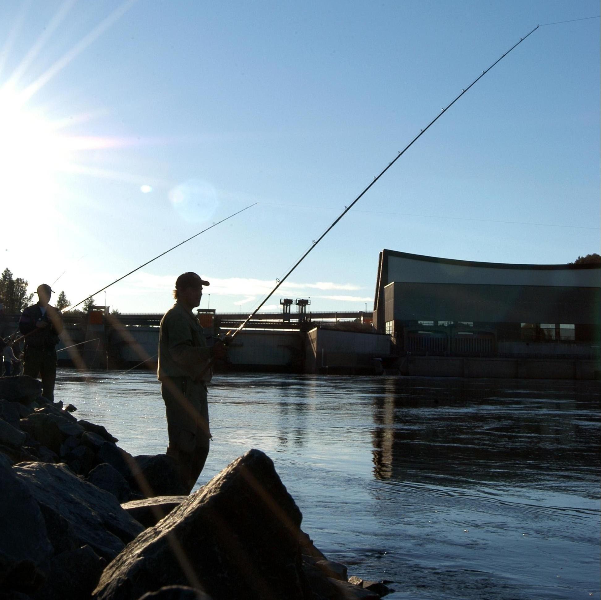 Foto: Petra Järnbert, Nipstadsfisket i Sollefteå stad