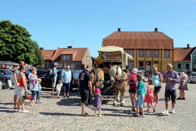 Rundtur med häst och vagn