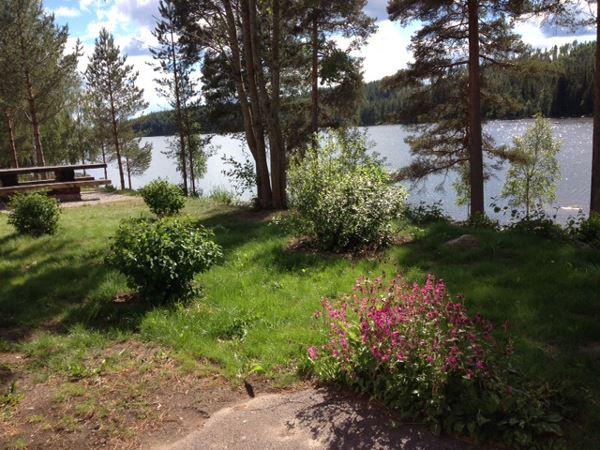 Rällsjöns rastplats