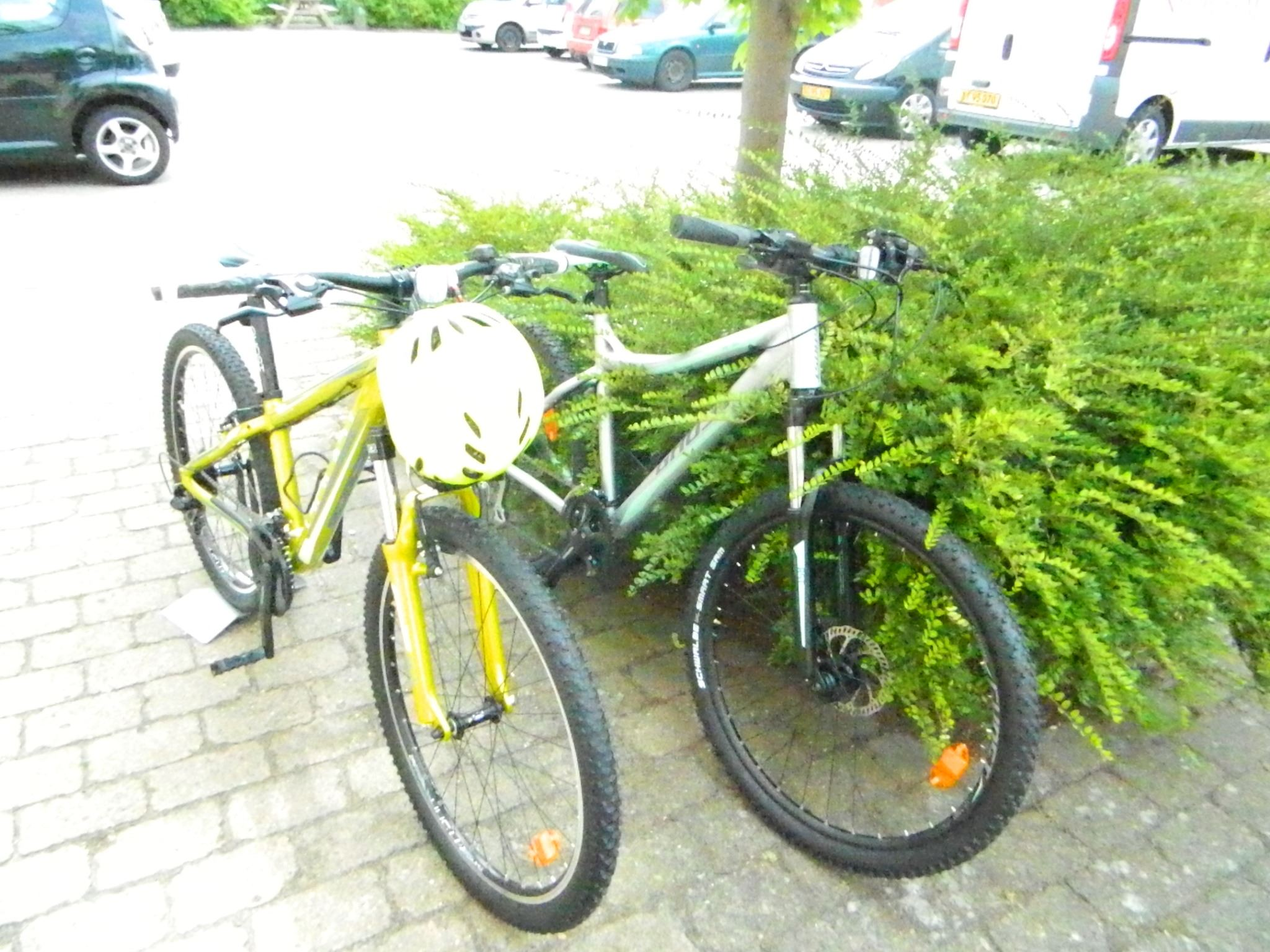 Lykke Cykler's Cykeludlejning
