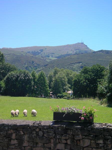 Randonnée à Saint-Pée-sur-Nivelle : Le Suhalmendi