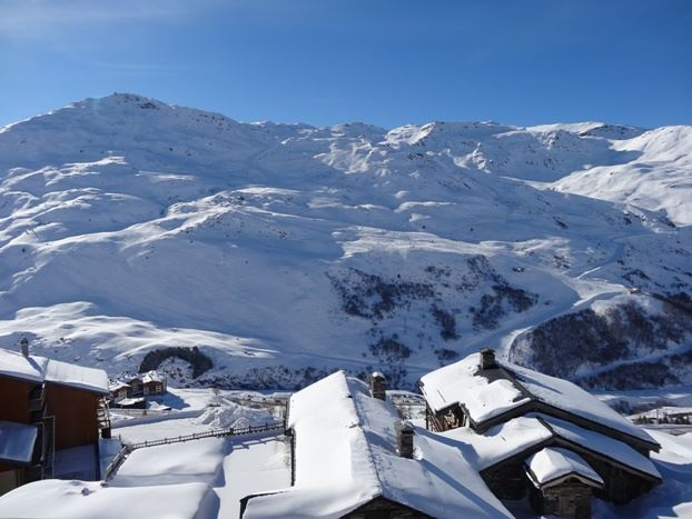 2 Rooms 5 Pers ski-in ski-out / NECOU 310