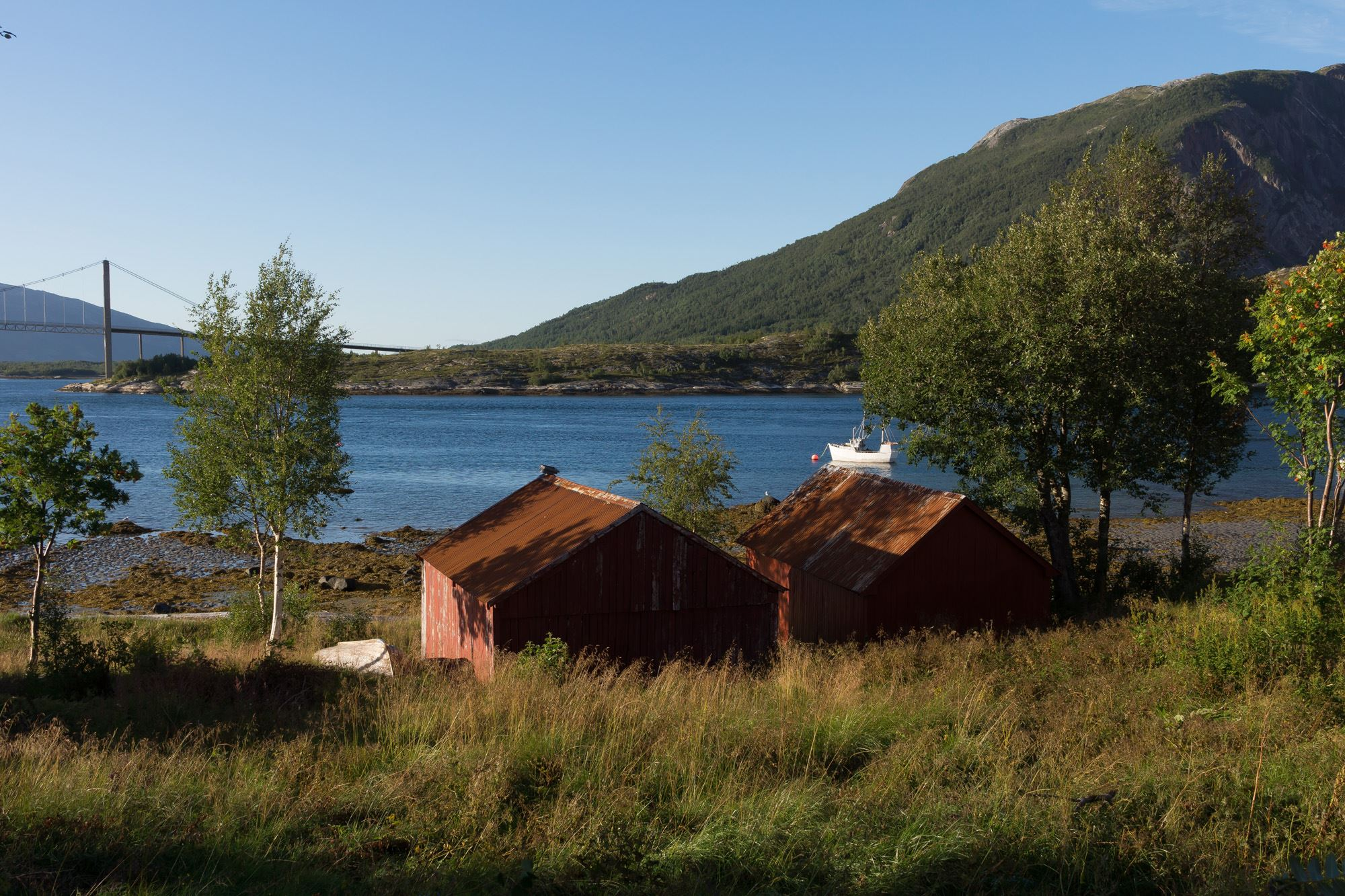Utsikt fra Kjellingstraumen fjordcamp