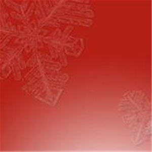 © vit hjärta på röd bakgrund, Busstorget
