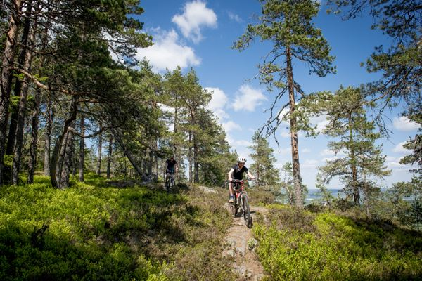 Mountain biking Säterdalen - Bispberg outcrop 13km