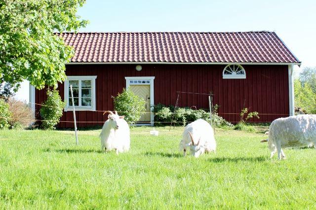 Mindre stuga på Gammelgården, Nåthult