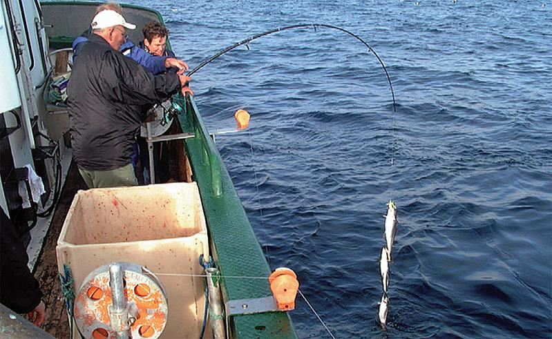 Deep-Sea Fishing - Puffin Safari AS