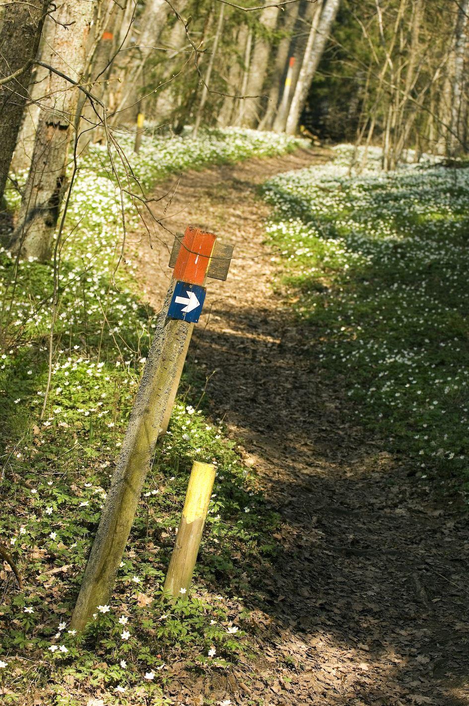 Wanderweg - Västra Vätterleden (Etappe 8)