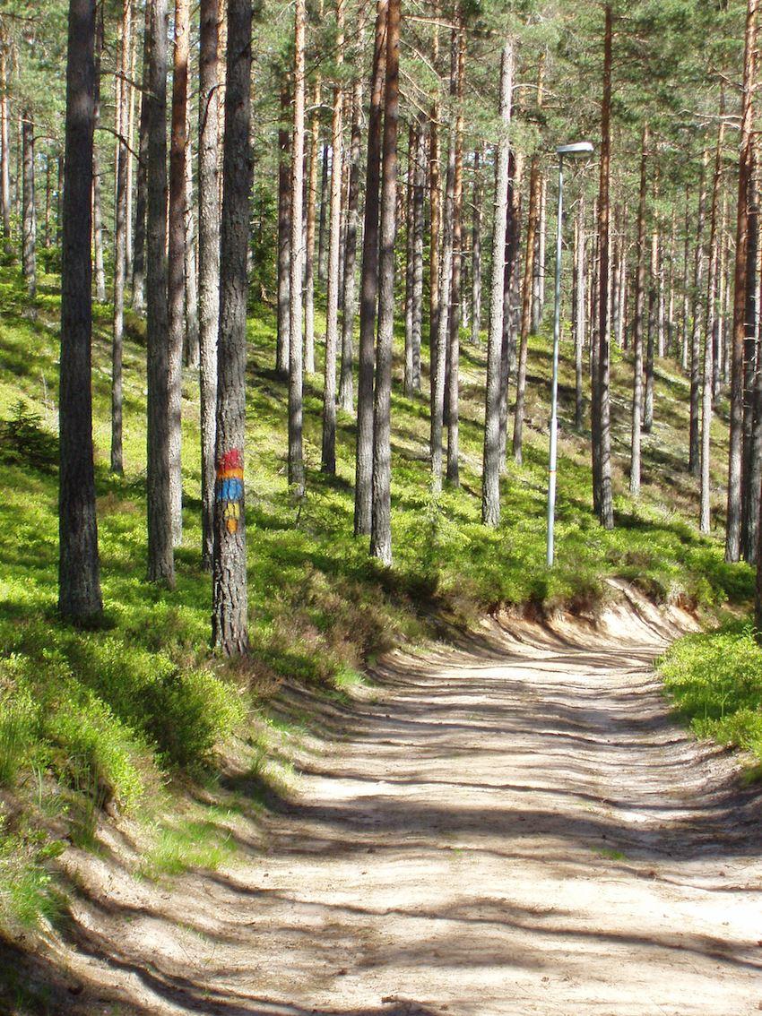 Joggingtrack - Fagerhult, Habo