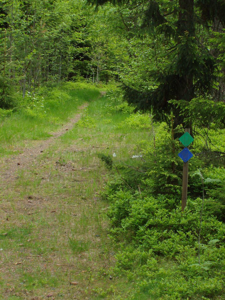 Joggingpfad - Motionsspår Gränsenstugan, Habo (L)