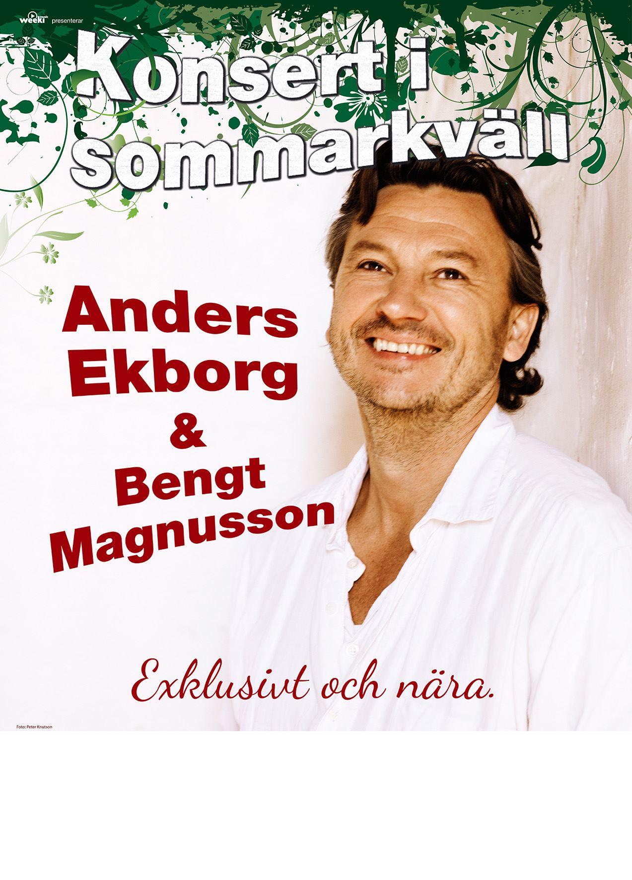 Anders Ekborg - Konsert i Sommarkväll