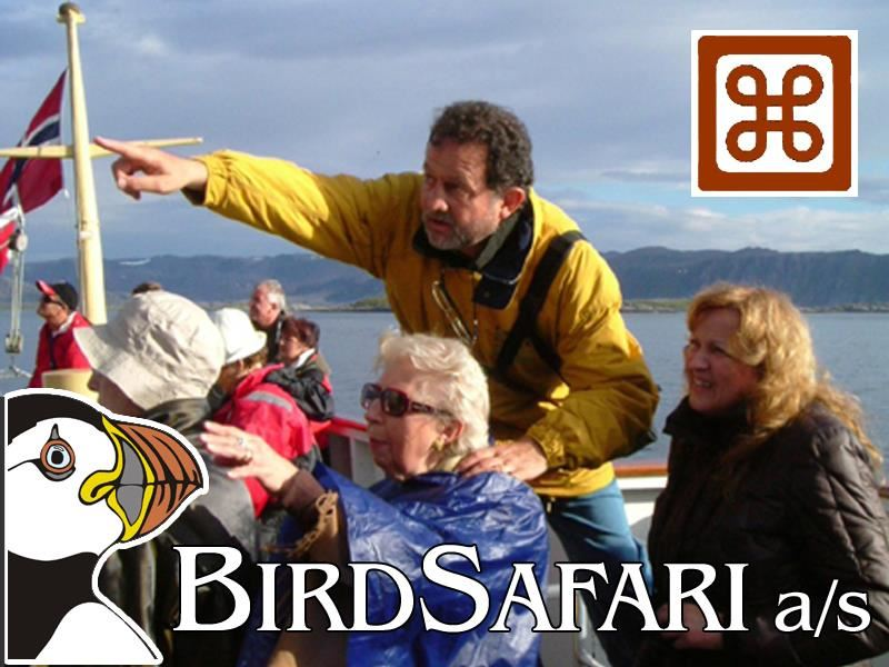 Bird safari - The Number Two Attraction at North Cape