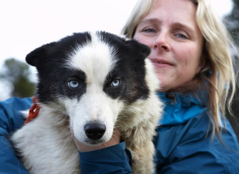 Daytrip by dog sledge to the Norwegian- Russian borderland