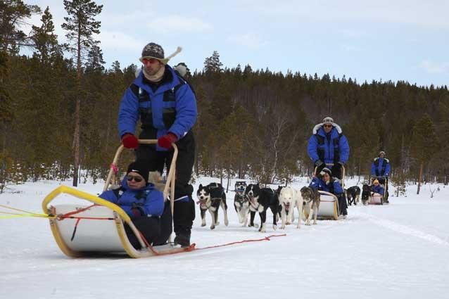 © Lene Stavaa, Daytrip by dog sledge to the Norwegian- Russian borderland