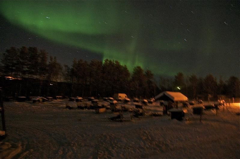 Hunting the northern lights with dog-sledge trip in Norwegian-Russian borderland including dinner